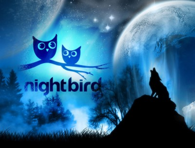 night bird.jpg